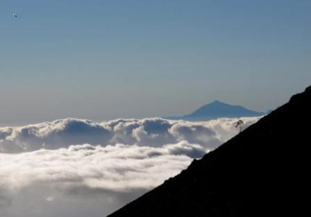 Transvulcania Lauf Teide.jpg